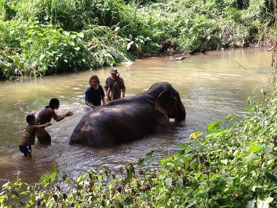 Tong Bai Elephant Tour Mae Boontong bathing